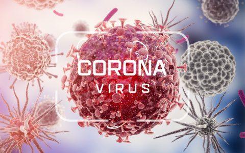 Milyen ismereteink vannak a vírusról, és miben segítenek nekünk?